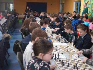 chess ssp 01
